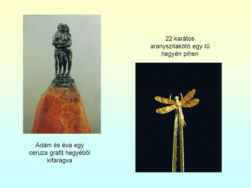 Ádám és éva egy ceruza grafit hegyéből kifaragva 22 karátos aranyszitakötő egy tű hegyén pihen