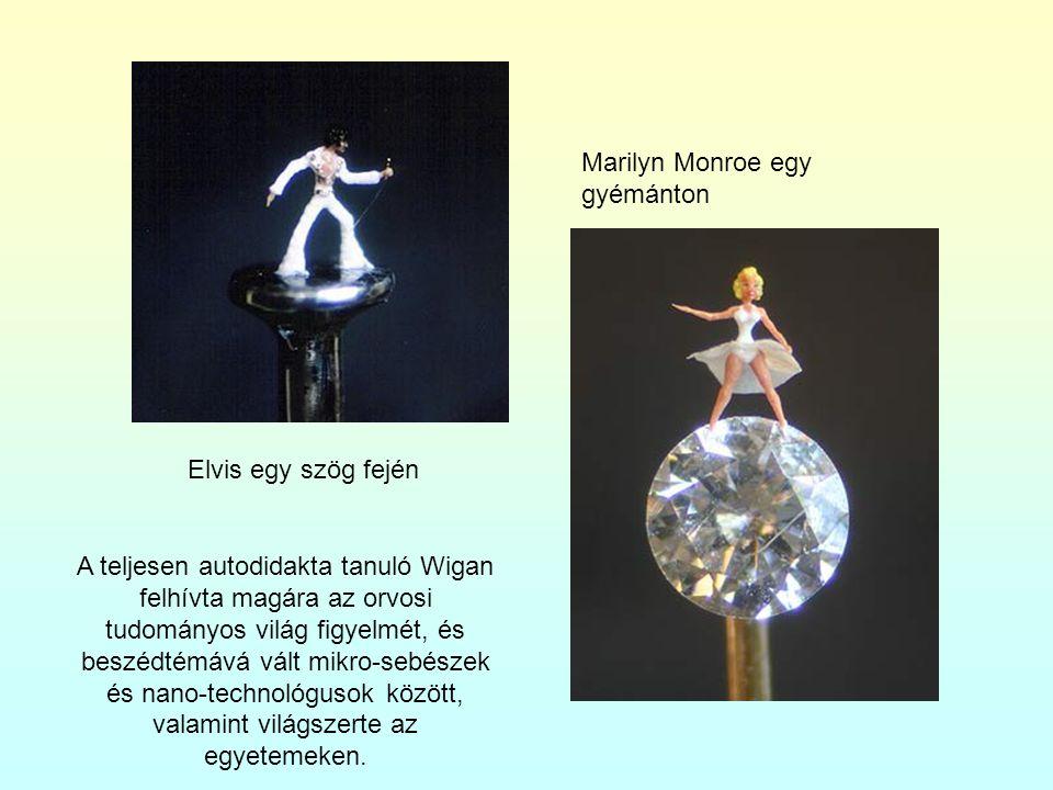 Elvis egy szög fején Marilyn Monroe egy gyémánton A teljesen autodidakta tanuló Wigan felhívta magára az orvosi tudományos világ figyelmét, és beszédtémává vált mikro-sebészek és nano-technológusok között, valamint világszerte az egyetemeken.