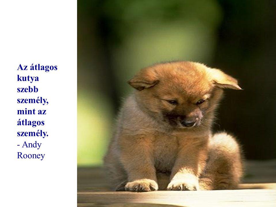 Ha nincsenek kutyák a menyországban, akkor oda akarok menni, ahova ők is mentek. - Will Rogers