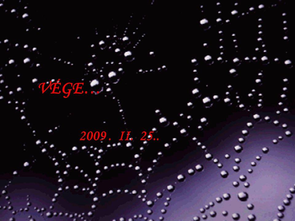 VÉGE… 2009. II. 25..