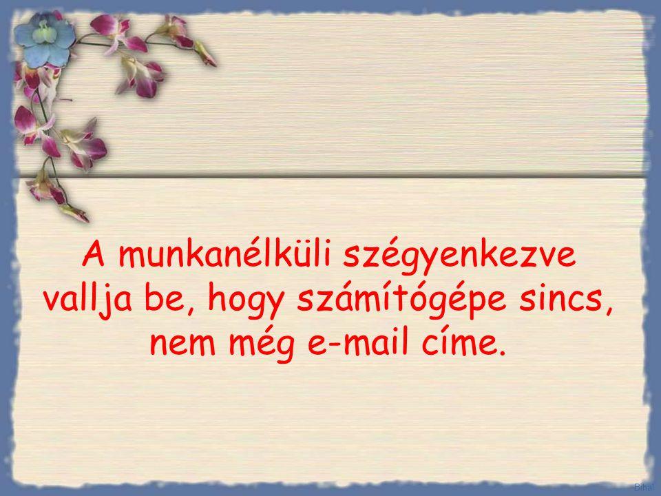 Végül azt mondja: - Fel van véve, kérem adja meg az e-mail címét, hogy elküldhessük Önnek a munkaszerződést. Bihal