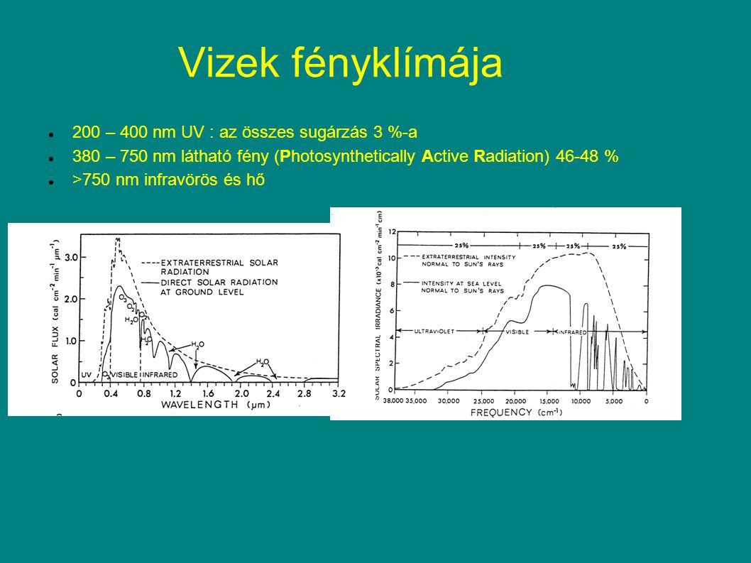 Vizek fényklímája 200 – 400 nm UV : az összes sugárzás 3 %-a 380 – 750 nm látható fény (Photosynthetically Active Radiation) 46-48 % >750 nm infravörö