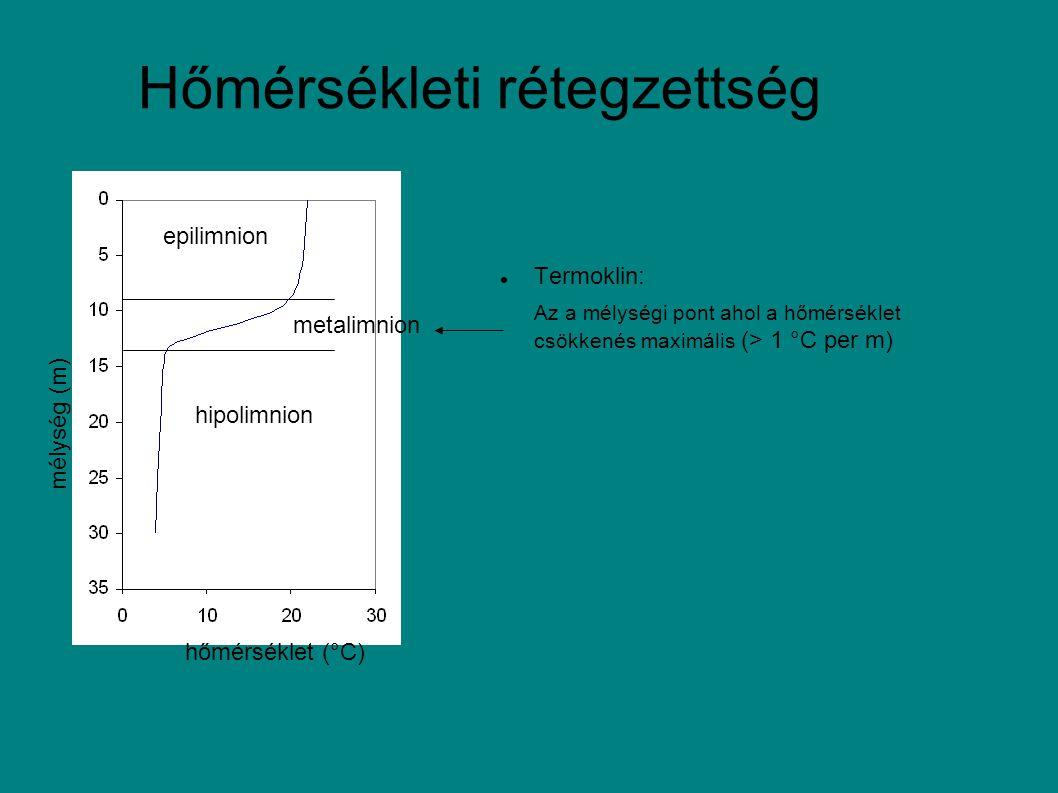 Hőmérsékleti rétegzettség mélység (m) hőmérséklet (°C) epilimnion hipolimnion metalimnion Termoklin: Az a mélységi pont ahol a hőmérséklet csökkenés