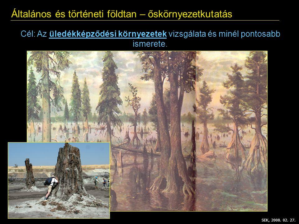 Általános és történeti földtan – őskörnyezetkutatás SEK, 2008. 02. 27. Cél: Az üledékképződési környezetek vizsgálata és minél pontosabb ismerete.