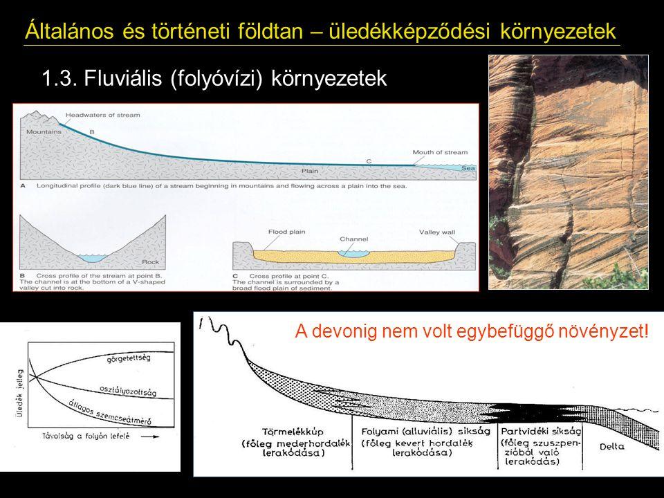 Általános és történeti földtan – üledékképződési környezetek 1.3. Fluviális (folyóvízi) környezetek A devonig nem volt egybefüggő növényzet!