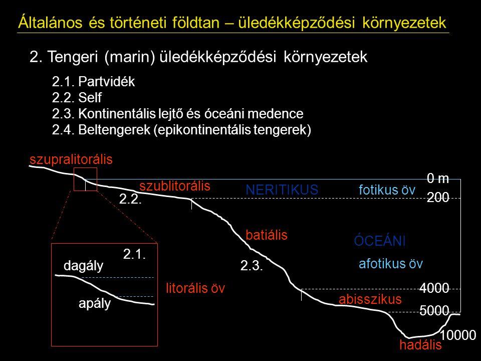Általános és történeti földtan – üledékképződési környezetek 2. Tengeri (marin) üledékképződési környezetek 2.1. Partvidék 2.2. Self 2.3. Kontinentáli