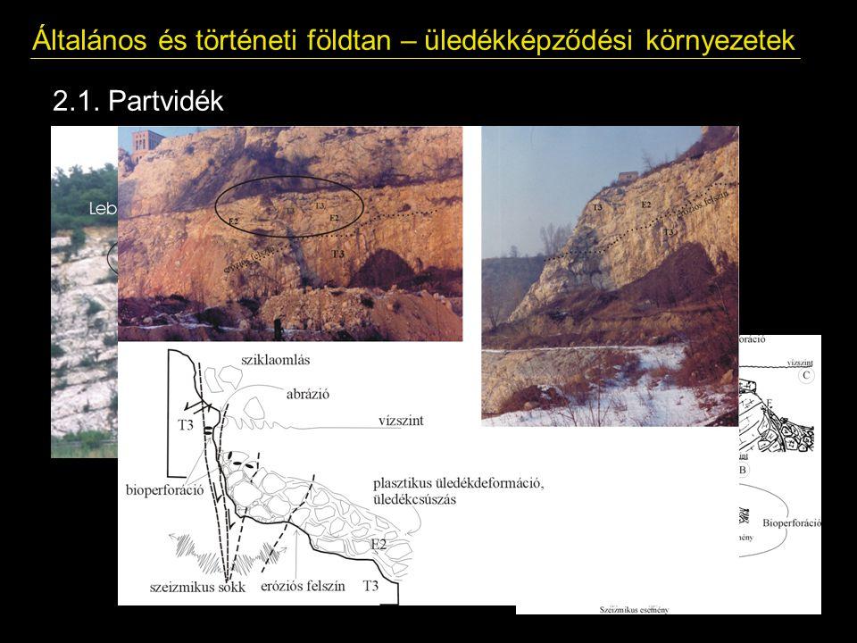 Általános és történeti földtan – üledékképződési környezetek 2.1. Partvidék Delta környezet Meredek part (abráziós, pusztuló partok) Lapos, homokos pa