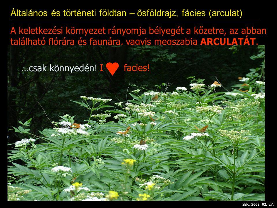 Általános és történeti földtan – ősföldrajz, fácies (arculat) SEK, 2008.