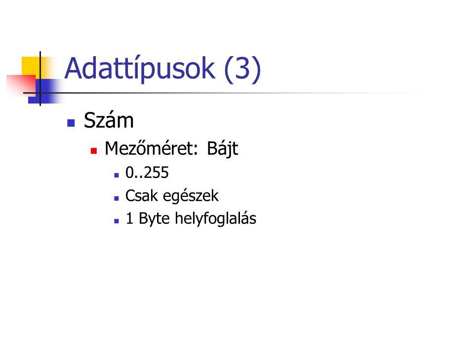 Adattípusok (3) Szám Mezőméret: Bájt 0..255 Csak egészek 1 Byte helyfoglalás