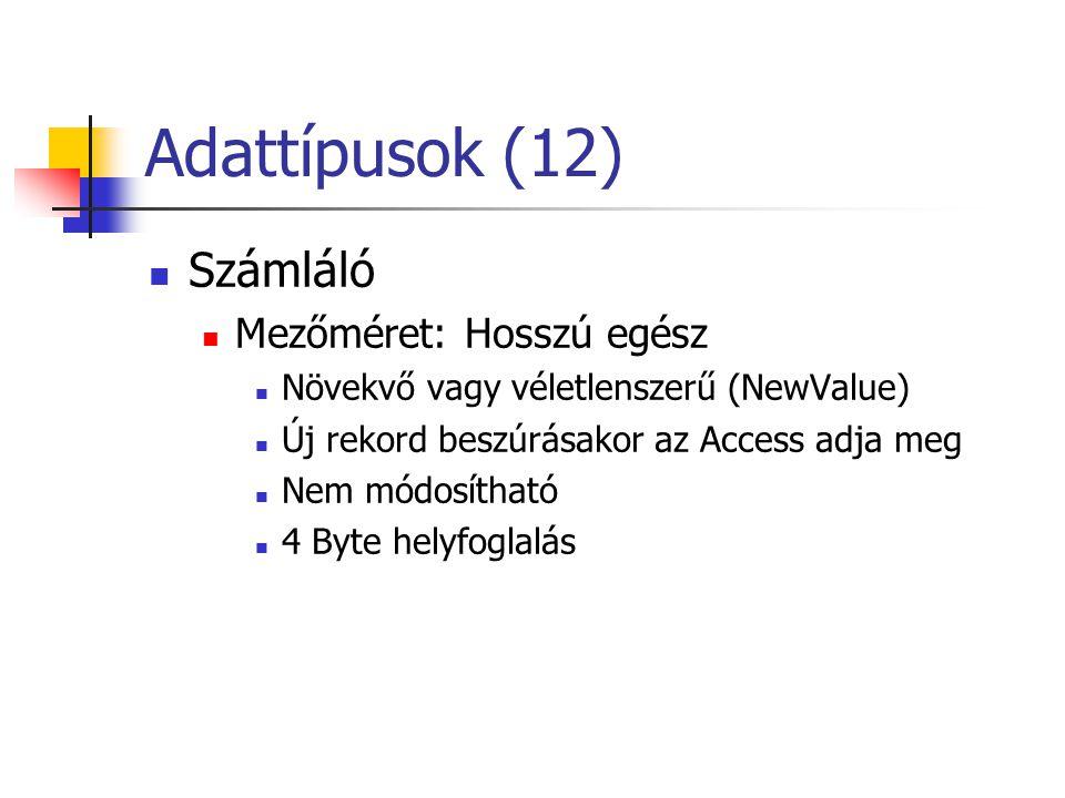 Adattípusok (12) Számláló Mezőméret: Hosszú egész Növekvő vagy véletlenszerű (NewValue) Új rekord beszúrásakor az Access adja meg Nem módosítható 4 Byte helyfoglalás