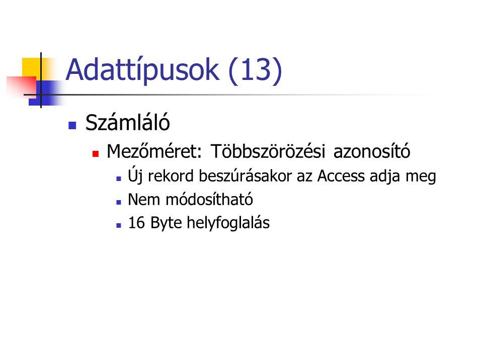 Adattípusok (13) Számláló Mezőméret: Többszörözési azonosító Új rekord beszúrásakor az Access adja meg Nem módosítható 16 Byte helyfoglalás