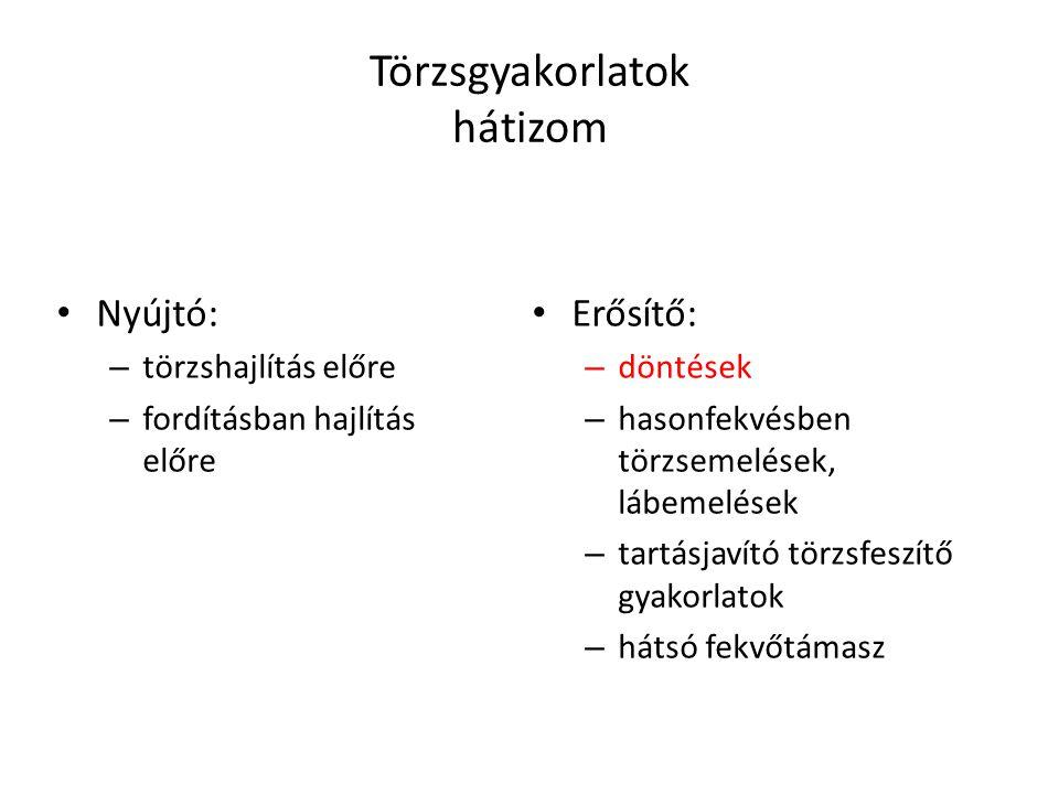 Törzsgyakorlatok hátizom Nyújtó: – törzshajlítás előre – fordításban hajlítás előre Erősítő: – döntések – hasonfekvésben törzsemelések, lábemelések –