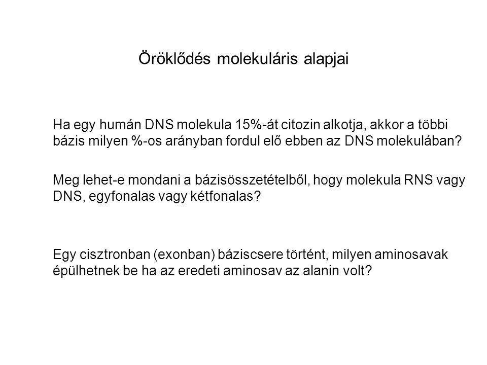 Öröklődés molekuláris alapjai Ha egy humán DNS molekula 15%-át citozin alkotja, akkor a többi bázis milyen %-os arányban fordul elő ebben az DNS molek