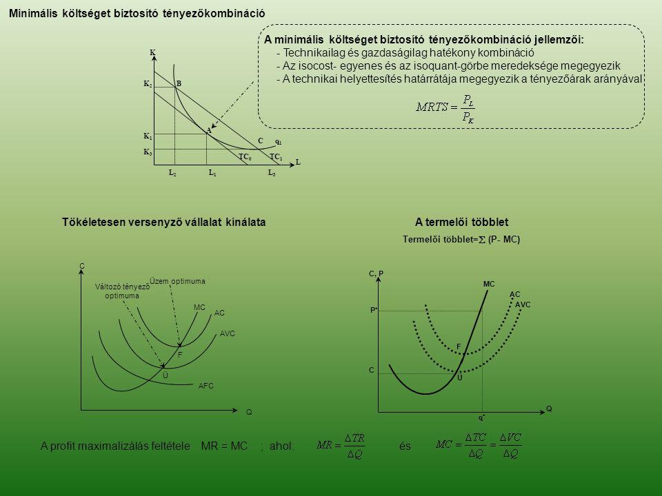 K L q1q1 TC 0 TC 1 A B C K2K2 K1K1 K3K3 L 2 L 1 L 3 A minimális költséget biztosító tényezőkombináció jellemzői: - Technikailag és gazdaságilag hatéko