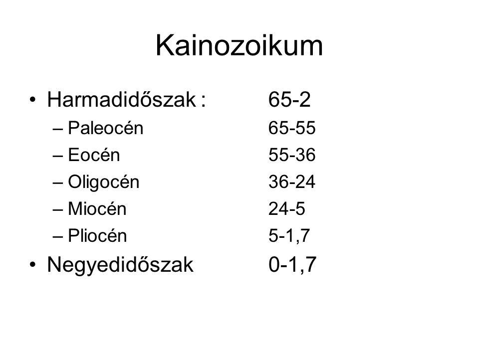 Kainozoikum Harmadidőszak :65-2 –Paleocén65-55 –Eocén55-36 –Oligocén36-24 –Miocén24-5 –Pliocén5-1,7 Negyedidőszak0-1,7