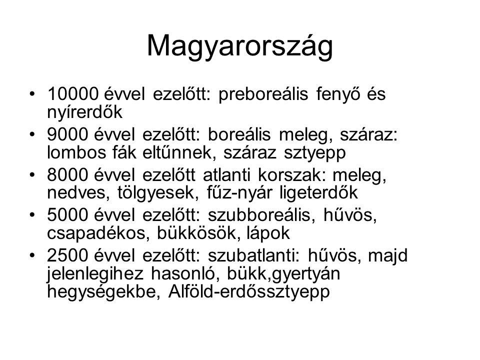 Magyarország 10000 évvel ezelőtt: preboreális fenyő és nyírerdők 9000 évvel ezelőtt: boreális meleg, száraz: lombos fák eltűnnek, száraz sztyepp 8000