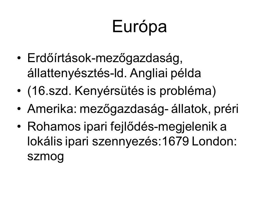 Európa Erdőírtások-mezőgazdaság, állattenyésztés-ld. Angliai példa (16.szd. Kenyérsütés is probléma) Amerika: mezőgazdaság- állatok, préri Rohamos ipa