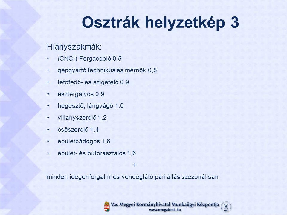 Osztrák helyzetkép 3 Hiányszakmák: ( CNC-) Forgácsoló 0,5 gépgyártó technikus és mérnök 0,8 tetőfedö- és szigetelő 0,9 esztergályos 0,9 hegesztő, lángvágó 1,0 villanyszerelő 1,2 csőszerelő 1,4 épületbádogos 1,6 épület- és bútorasztalos 1,6 + minden idegenforgalmi és vendéglátóipari állás szezonálisan
