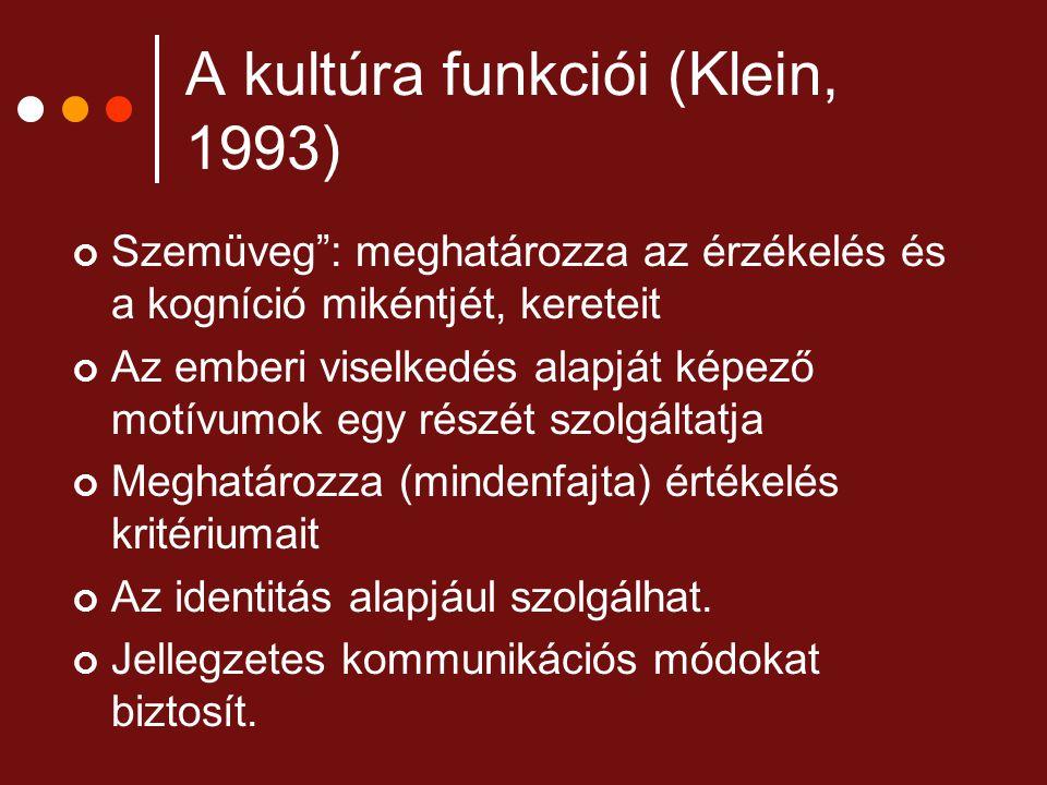 """A kultúra funkciói (Klein, 1993) Szemüveg"""": meghatározza az érzékelés és a kogníció mikéntjét, kereteit Az emberi viselkedés alapját képező motívumok"""