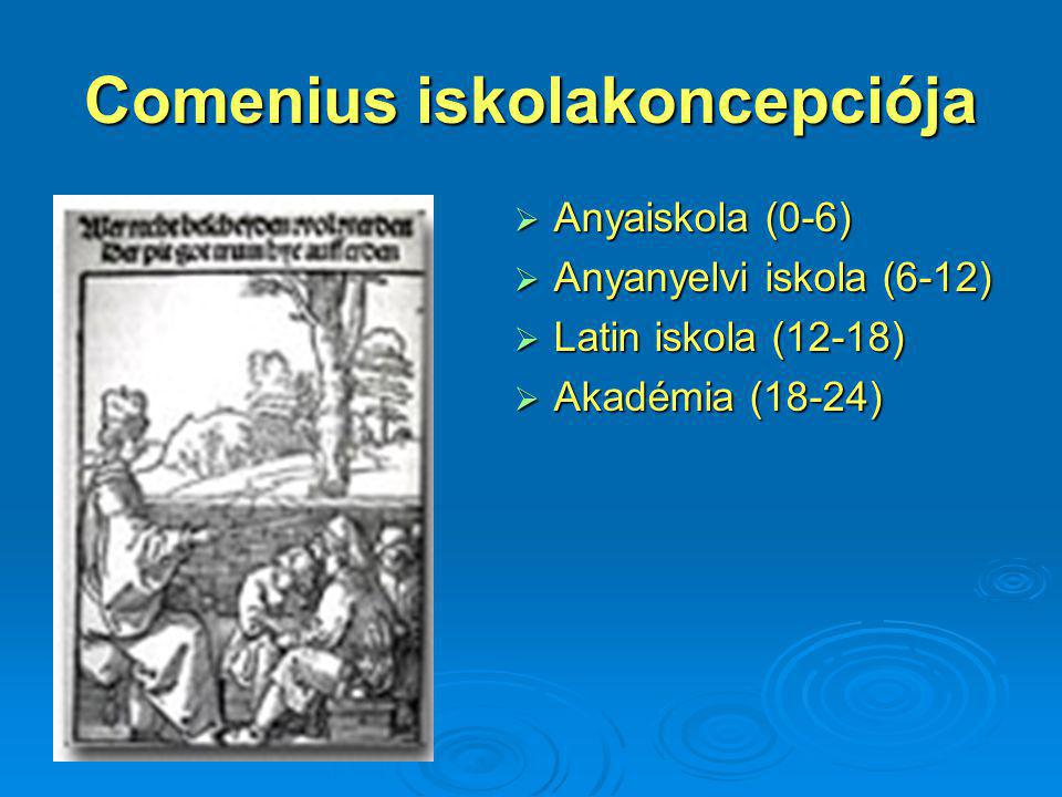 Comenius iskolakoncepciója  Anyaiskola (0-6)  Anyanyelvi iskola (6-12)  Latin iskola (12-18)  Akadémia (18-24)