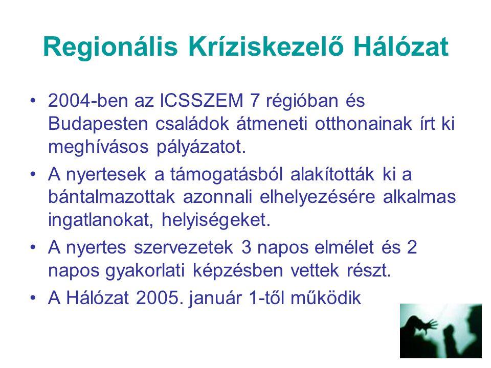 Regionális Kríziskezelő Hálózat 2004-ben az ICSSZEM 7 régióban és Budapesten családok átmeneti otthonainak írt ki meghívásos pályázatot. A nyertesek a