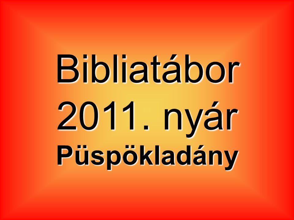 Bibliatábor 2011. nyár Püspökladány