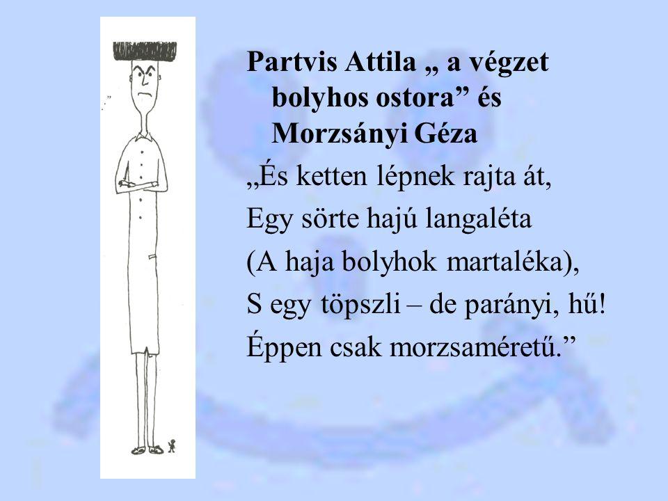 """Partvis Attila """" a végzet bolyhos ostora és Morzsányi Géza """"És ketten lépnek rajta át, Egy sörte hajú langaléta (A haja bolyhok martaléka), S egy töpszli – de parányi, hű."""