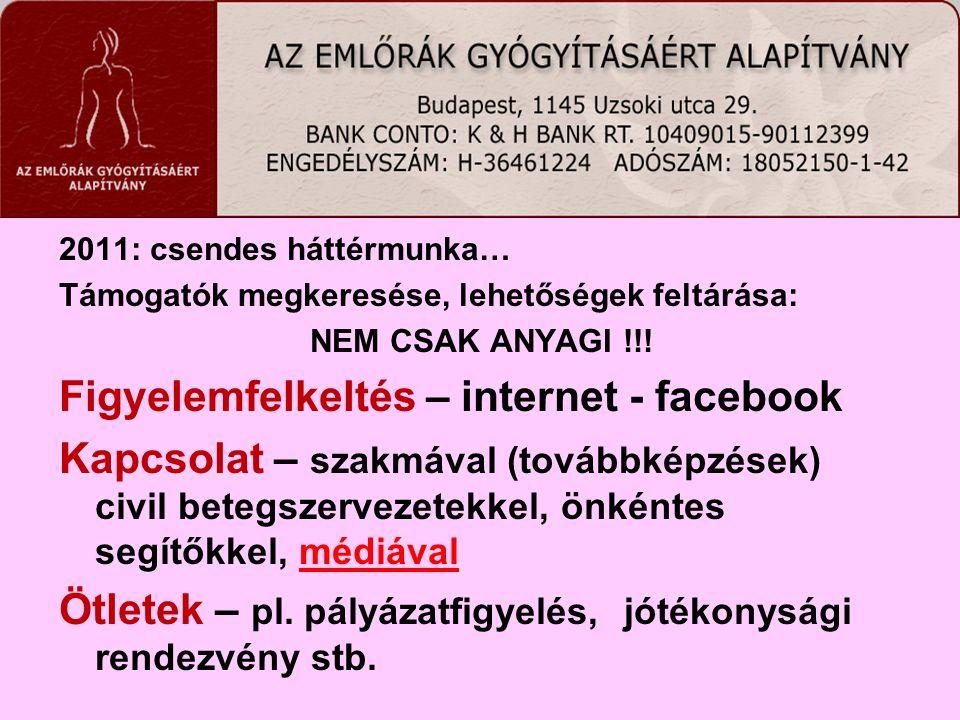 2011: csendes háttérmunka… Támogatók megkeresése, lehetőségek feltárása: NEM CSAK ANYAGI !!! Figyelemfelkeltés – internet - facebook Kapcsolat – szakm