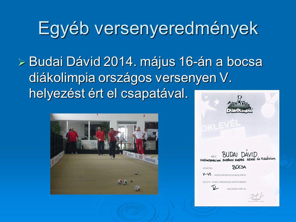 Egyéb versenyeredmények  Budai Dávid 2014. május 16-án a bocsa diákolimpia országos versenyen V. helyezést ért el csapatával.