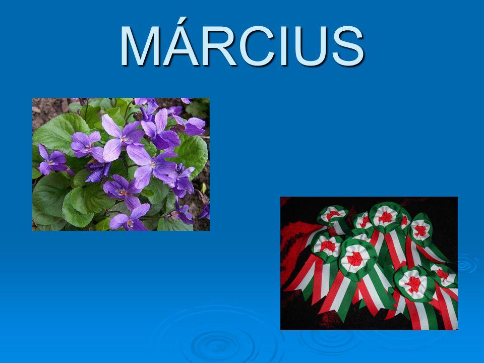 MÁRCIUS