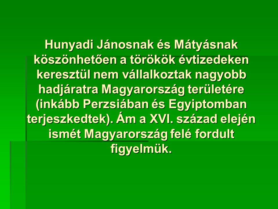 Hunyadi Jánosnak és Mátyásnak köszönhetően a törökök évtizedeken keresztül nem vállalkoztak nagyobb hadjáratra Magyarország területére (inkább Perzsiá