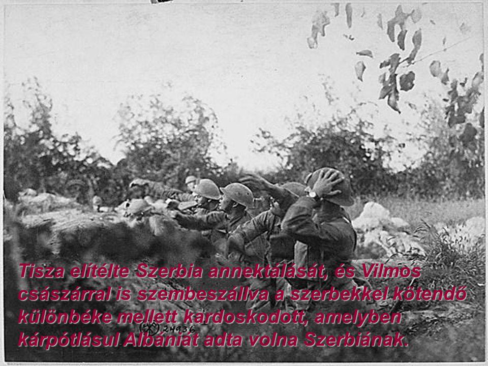 Tisza elítélte Szerbia annektálását, és Vilmos császárral is szembeszállva a szerbekkel kötendő különbéke mellett kardoskodott, amelyben kárpótlásul A