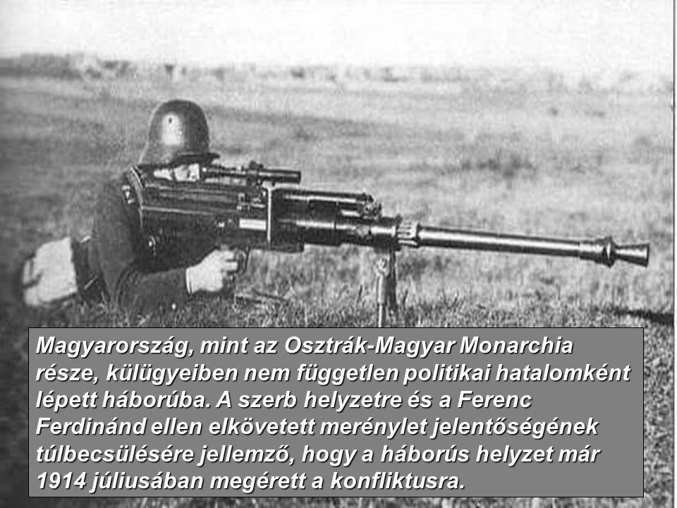 Magyarország, mint az Osztrák-Magyar Monarchia része, külügyeiben nem független politikai hatalomként lépett háborúba. A szerb helyzetre és a Ferenc F
