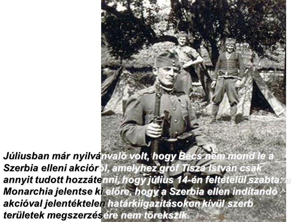 Júliusban már nyilvánvaló volt, hogy Bécs nem mond le a Szerbia elleni akcióról, amelyhez gróf Tisza István csak annyit tudott hozzátenni, hogy július