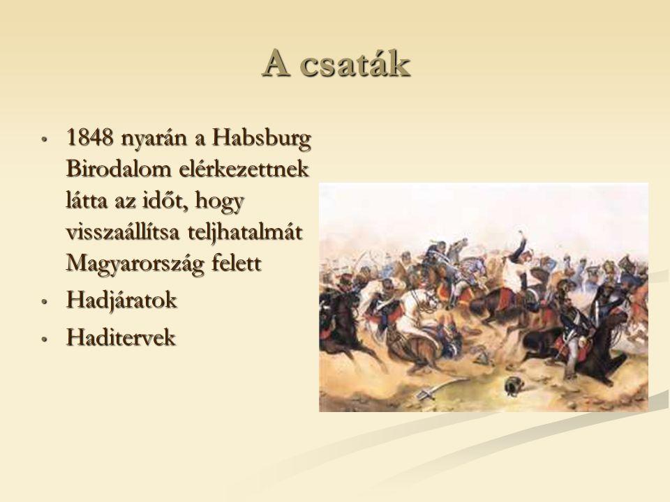 A csaták 1848 nyarán a Habsburg Birodalom elérkezettnek látta az időt, hogy visszaállítsa teljhatalmát Magyarország felett 1848 nyarán a Habsburg Biro