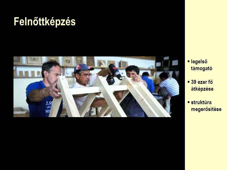 Felsőoktatás  423 tankönyv és jegyzet  17 háttér- intézmény  oktatói mobilitás