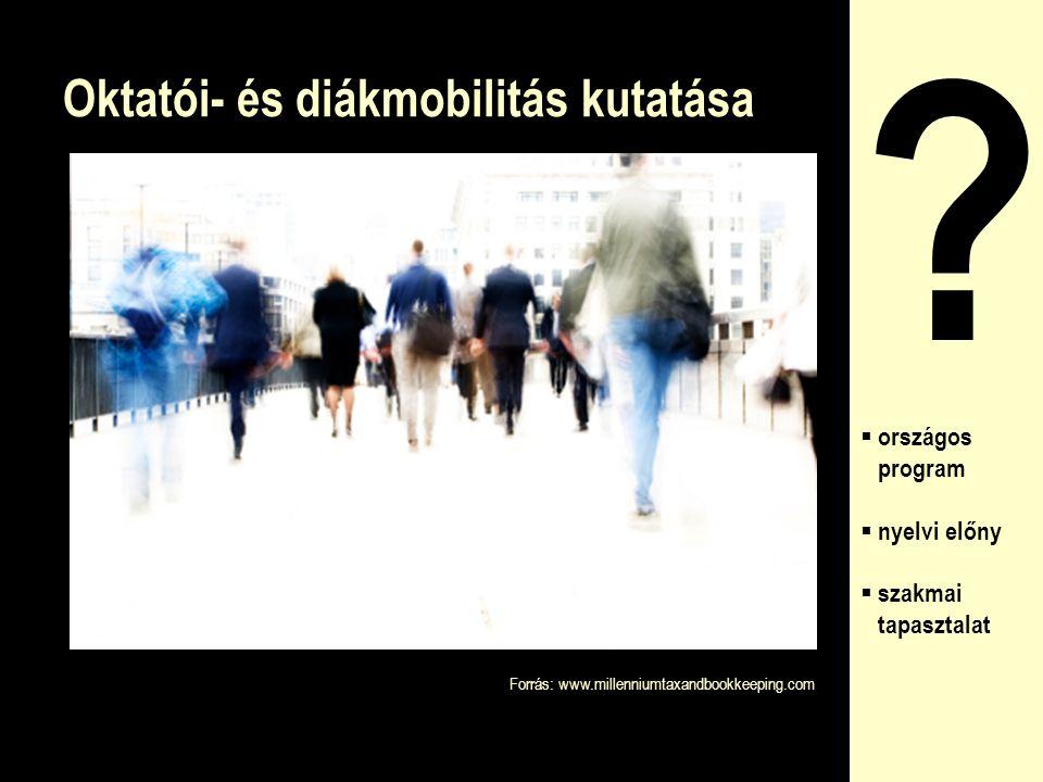 Oktatói- és diákmobilitás kutatása ?  országos program  nyelvi előny  szakmai tapasztalat Forrás: www.millenniumtaxandbookkeeping.com