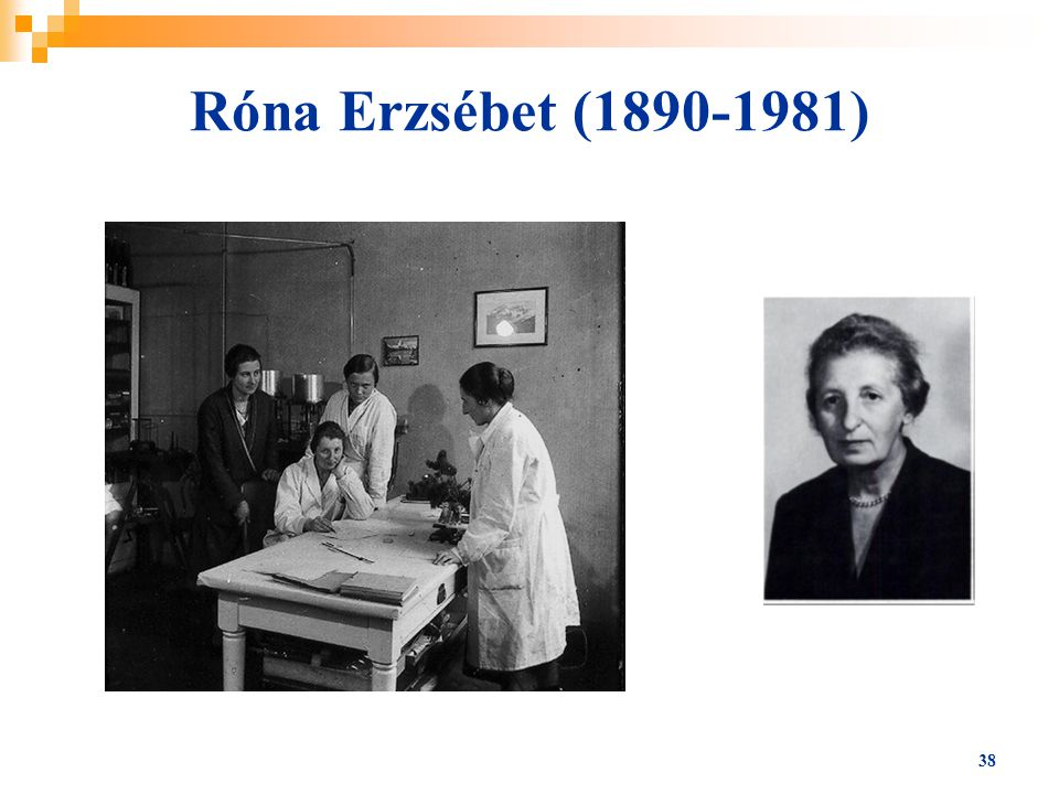 38 Róna Erzsébet (1890-1981)
