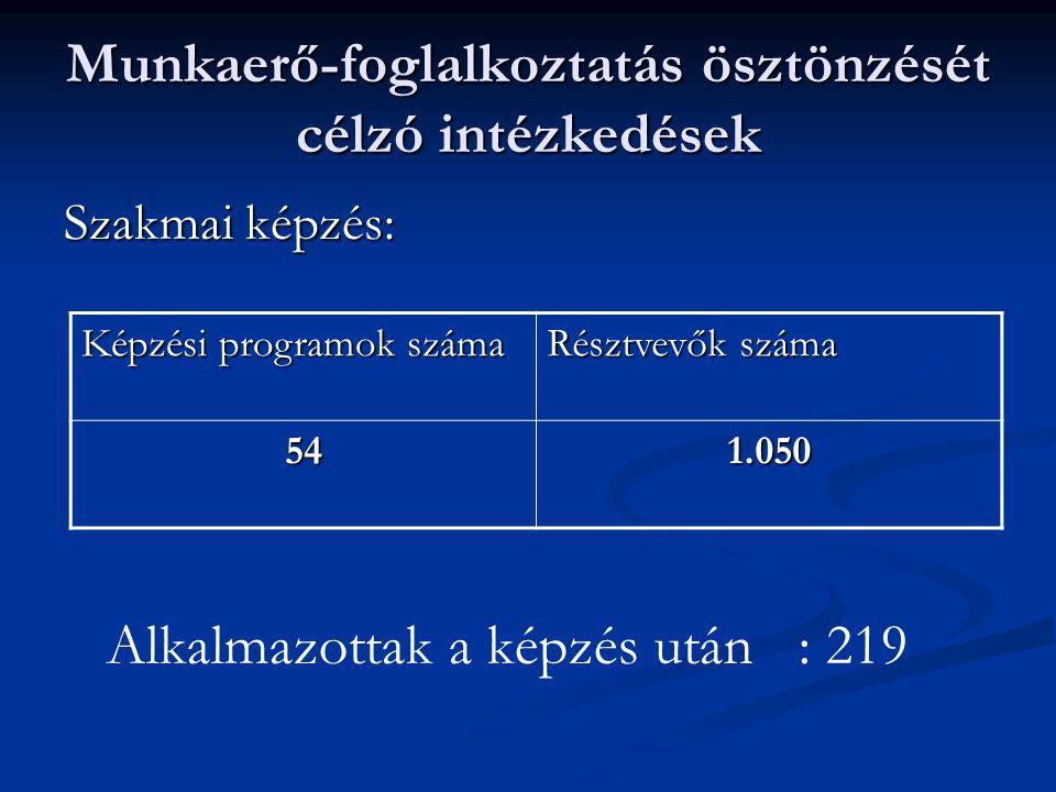 Munkaerő-foglalkoztatás ösztönzését célzó intézkedések Szakmai képzés: Képzési programok száma Résztvevők száma 541.050 Alkalmazottak a képzés után : 219