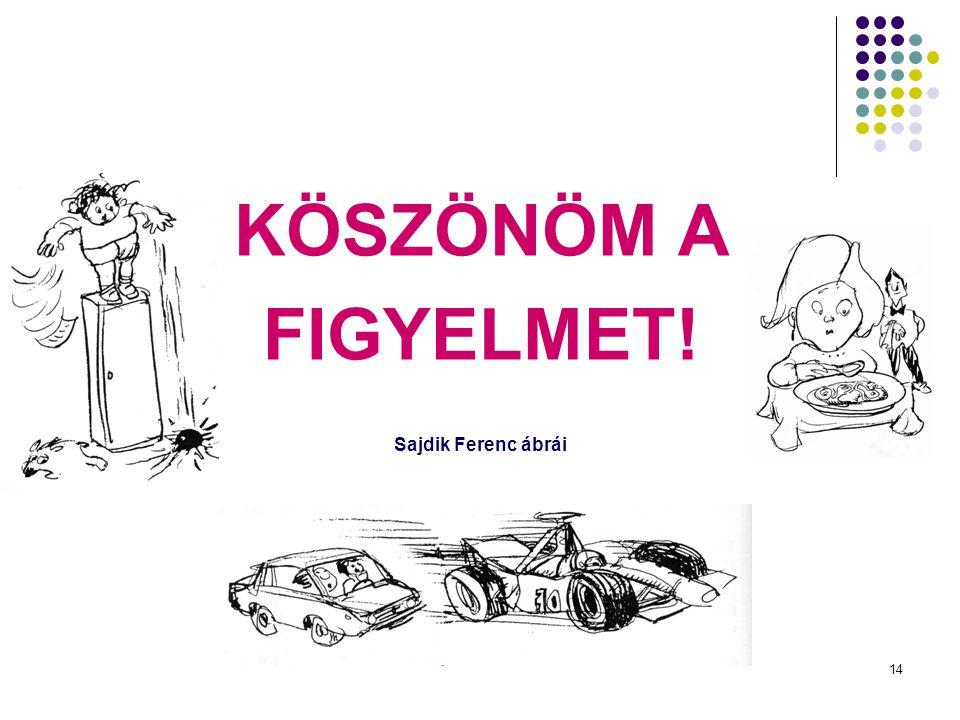 14 KÖSZÖNÖM A FIGYELMET! Sajdik Ferenc ábrái