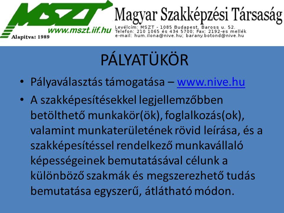 PÁLYATÜKÖR Pályaválasztás támogatása – www.nive.huwww.nive.hu A szakképesítésekkel legjellemzőbben betölthető munkakör(ök), foglalkozás(ok), valamint