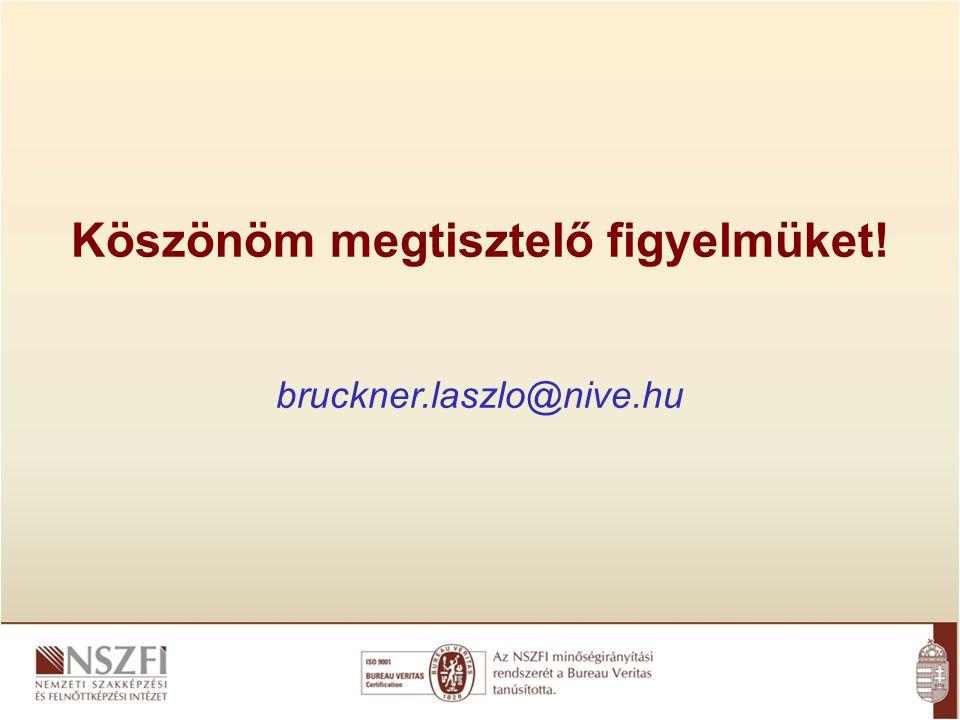 Köszönöm megtisztelő figyelmüket! bruckner.laszlo@nive.hu