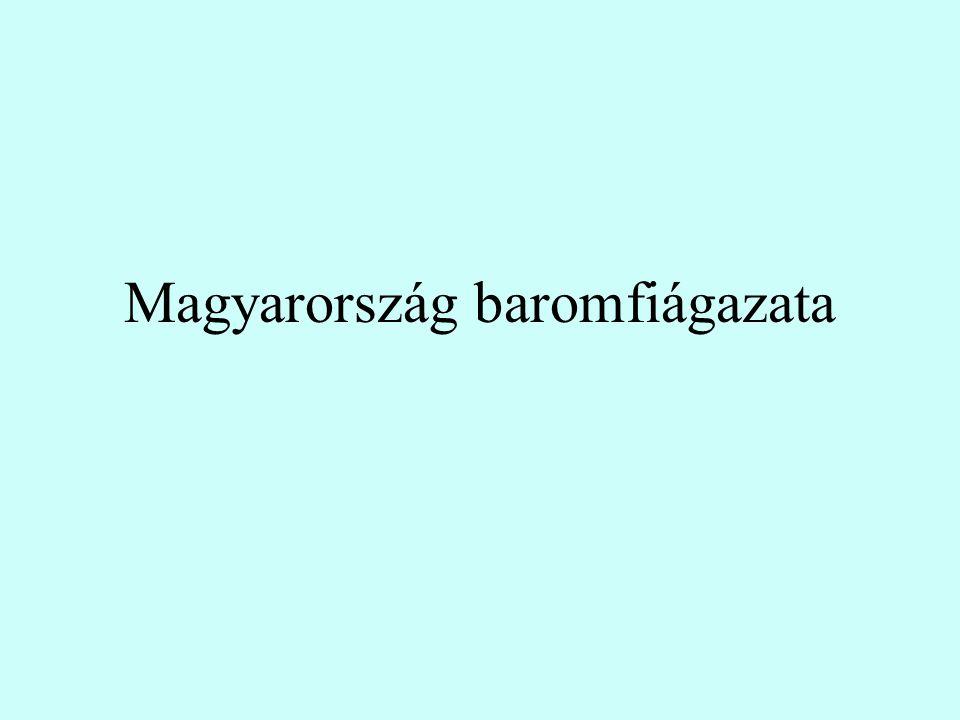 Magyarország baromfiágazata