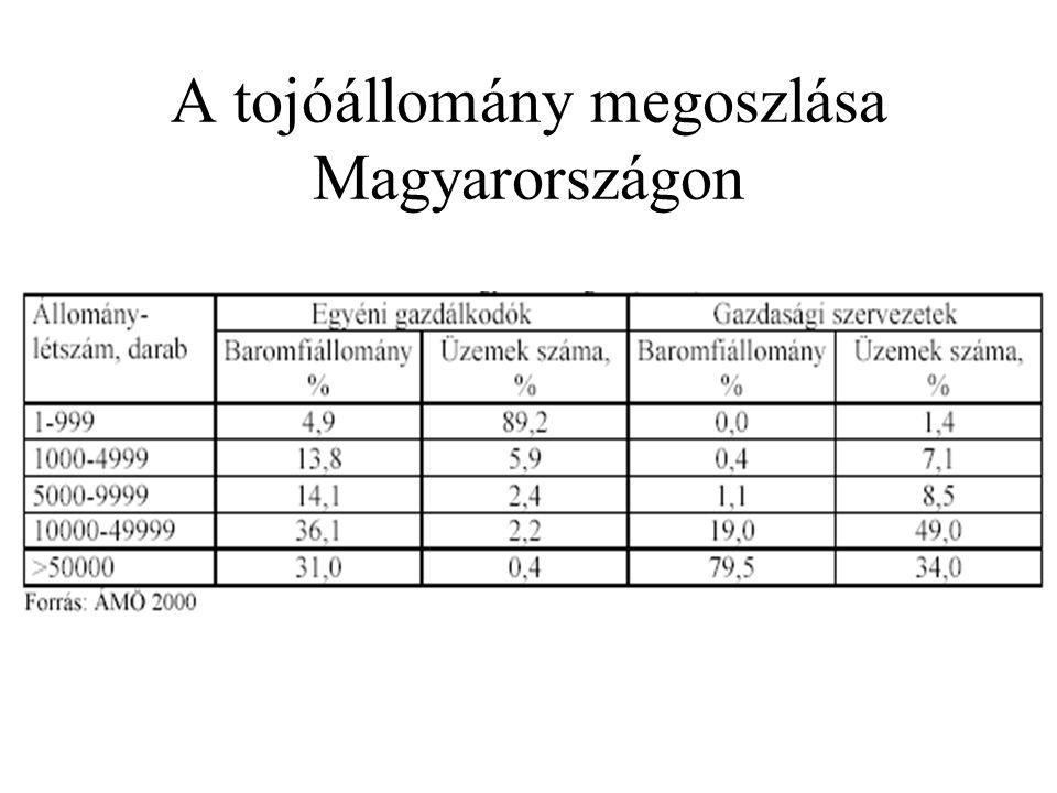 A tojóállomány megoszlása Magyarországon