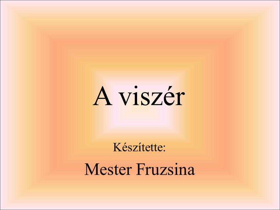 A viszér Készítette: Mester Fruzsina