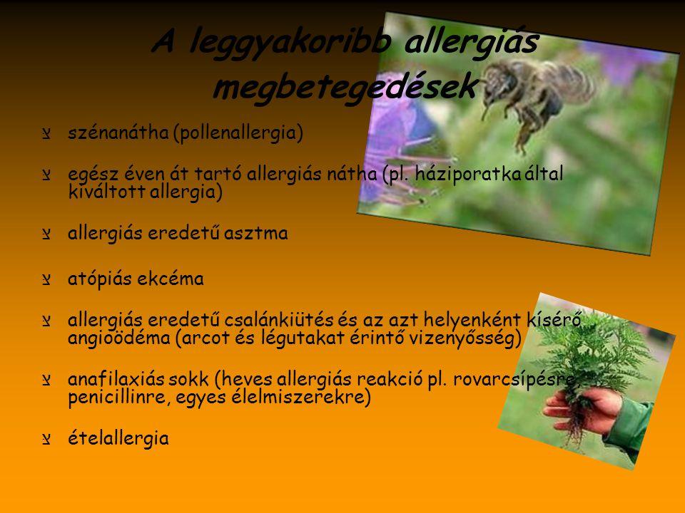 A leggyakoribb allergiás megbetegedések צּ szénanátha (pollenallergia) צּ egész éven át tartó allergiás nátha (pl. háziporatka által kiváltott allergia)
