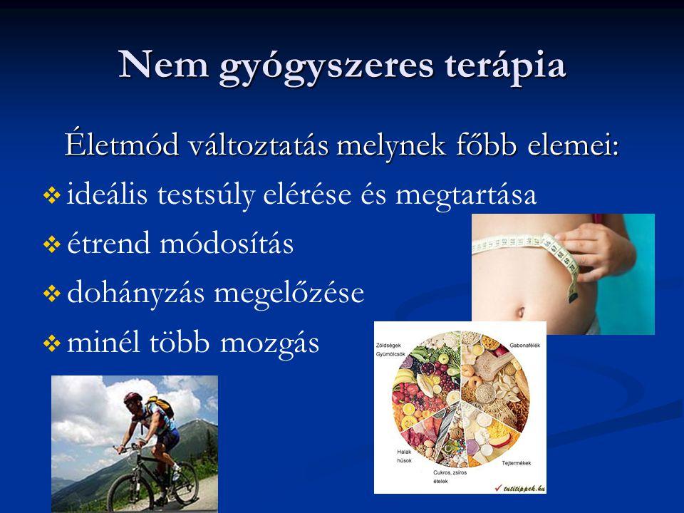 Nem gyógyszeres terápia Életmód változtatás melynek főbb elemei:   ideális testsúly elérése és megtartása   étrend módosítás   dohányzás megelőz