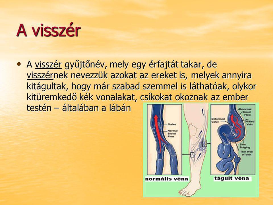 Tronbózis A trombózis a mélyen az izmok között fekvő vénák krónikus megbetegedése, amikor egy vérrög (azaz trombus) miatt a használt vért szív felé szállító véna egy szakaszon részlegesen vagy teljesen elzáródik.