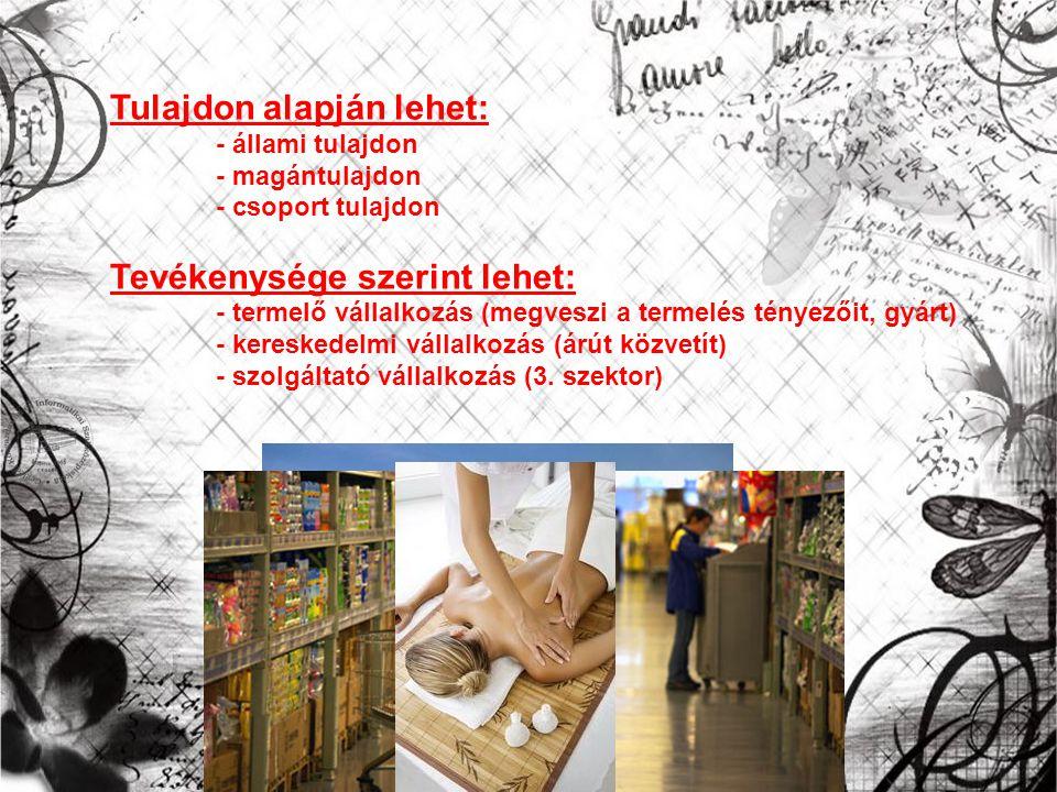 Tulajdon alapján lehet: - állami tulajdon - magántulajdon - csoport tulajdon Tevékenysége szerint lehet: - termelő vállalkozás (megveszi a termelés tényezőit, gyárt) - kereskedelmi vállalkozás (árút közvetít) - szolgáltató vállalkozás (3.