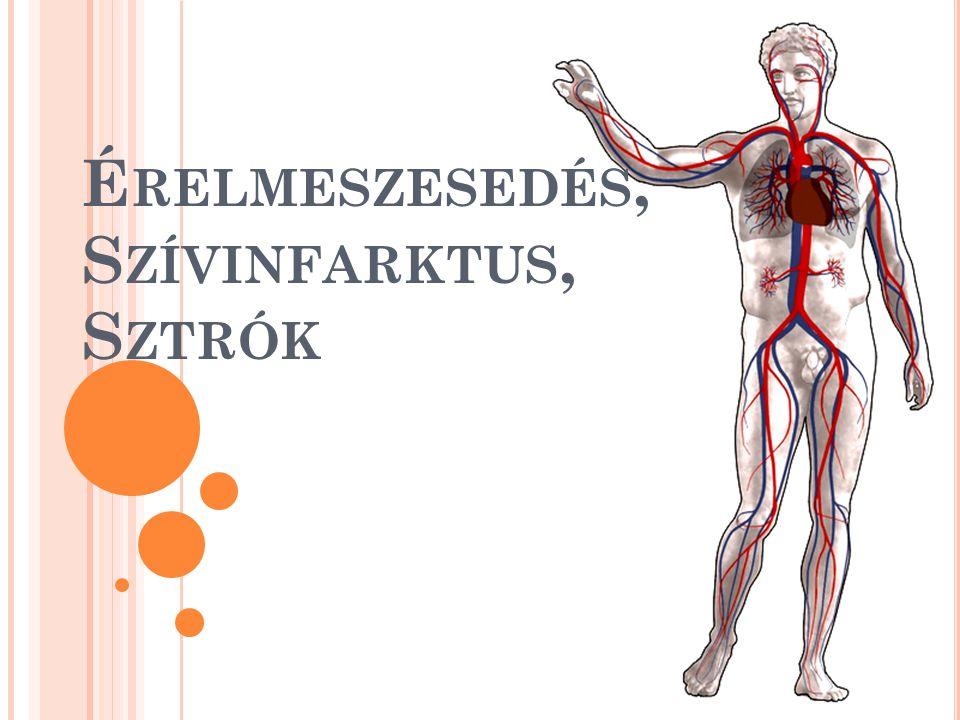 É RELMESZESEDÉS ( A RTERIOSZKLERÓZIS ) Okai: magas vérnyomás magas vérzsír szint dohányzás cukorbetegség mozgáshiány stressz elhízás előrehaladott életkor öröklődés Lipogénelmélet: A lipogénelmélet szerint, az érelmeszesedés kialakulását az érfalban lerakodó lipidek (zsírok) okozzák.